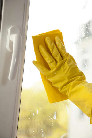 purge: Window cleaning