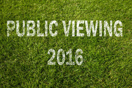 pubic: Pubic Viewing 2016 football Stock Photo
