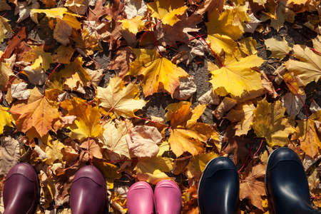 go for: Family with rubber boots go for a walk in autumn Stock Photo
