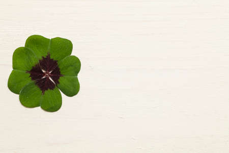 text space: Four leaf clover text space