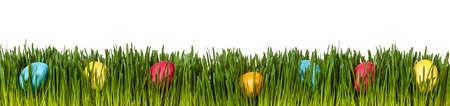 Easter eggs in grass on white Standard-Bild