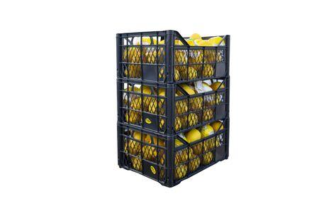lemon in plastic case isolated white background