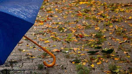 Blue umbrella standing on wet street on a rainy day Фото со стока