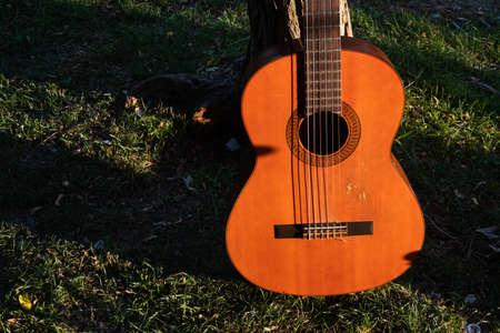 guitar background on grass ground Фото со стока