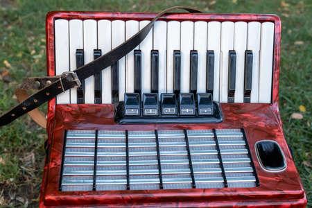 accordion on grass ground, close up Фото со стока