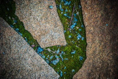 Stone pavement with moss as background image