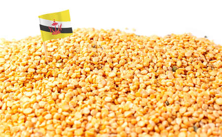Brunei flag sticking in a bunch of peas. The concept of export and import of peas