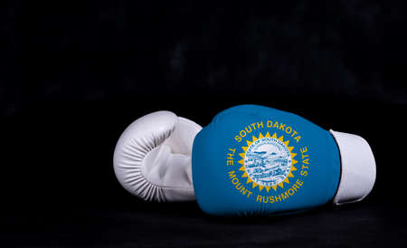 Boxing glove with South Dakota flag on black background.