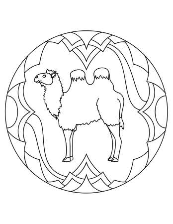Pattern with a camell. Illustration with a camell. Mandala with an animal.  Bactrian camell in a circular frame. Coloring page for kids and adults. Ilustração