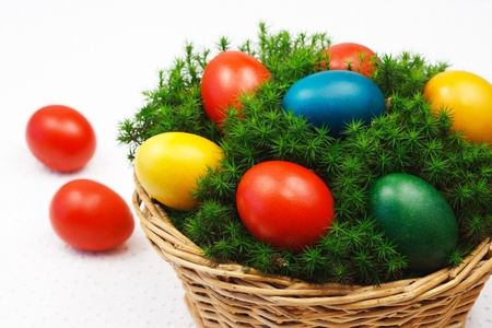 Easter basket with painted eggs on the mosses coating photo