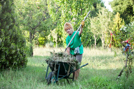 Attractive pensionné travaille dans son jardin propre Banque d'images - 98440170