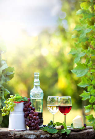 Still life with red and white wine in a green garden at sunset Stockfoto