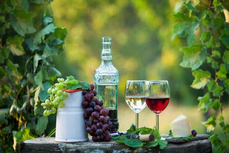 Still life with red and white wine in a green garden at sunset Stock fotó
