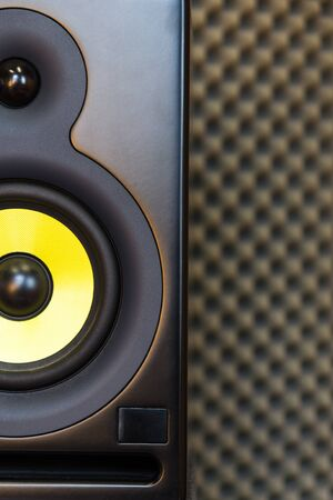 dolby: High-end music studio speakerloudspeaker. Horizontal composition