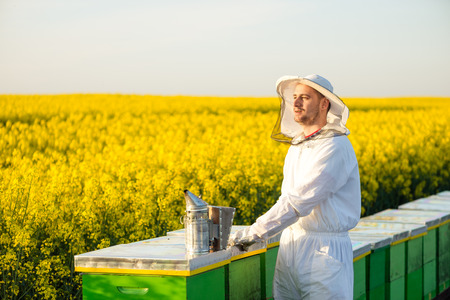 apiarist: Proud successful apiarist, on the rapeseed field, near his hives, looking into the Sun. Selective focus, Copy space Stock Photo
