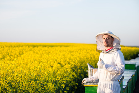apiarist: Young proud apiarist on the blooming rapeseed field gesturing thumb up. Narrow depth of field, selective focus Stock Photo