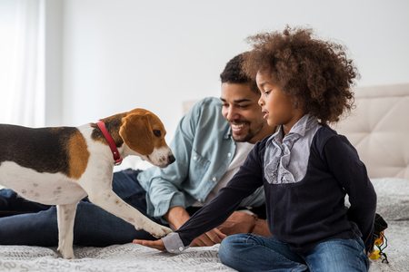 Dad and cute girl playing with dog. Stock Photo