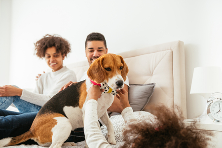 Happy african american family playing with their dog.