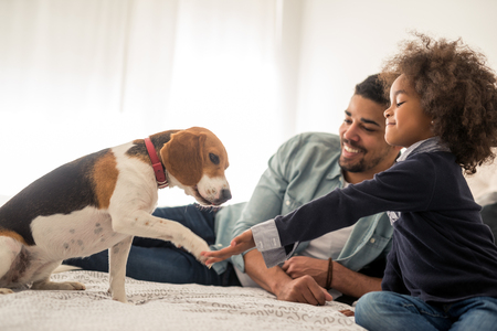 Portrait of an african american father and daughter enjoying spending time with dog in the bed. Stockfoto