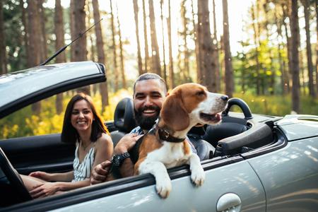 컨버터블에서 운전하는 강아지와 함께 젊은 부부의 총. 스톡 콘텐츠