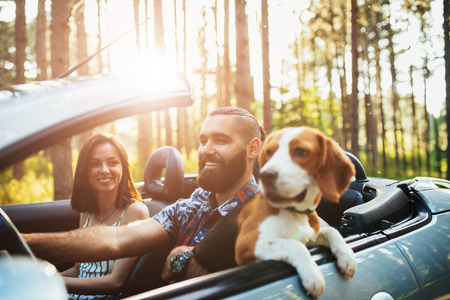 Close up photo of a happy young couple driving in the woods with a dog. Archivio Fotografico