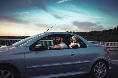 Portret van een glimlachende jonge mens die van het berijden in de auto met een hond geniet. Stockfoto