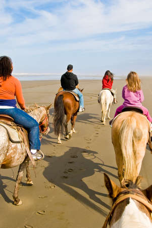 steed: A Group of People Enjoying Horseback Riding