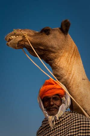 squalor: Elderly rajasthani man with a camel at the Pushkar Camel Fair 2009.