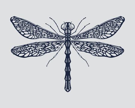 Dragonfly Фото со стока - 30682161