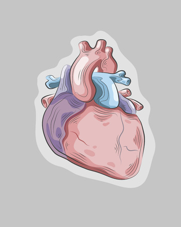 Hand drawn vector illustration or drawing of a heart Vector