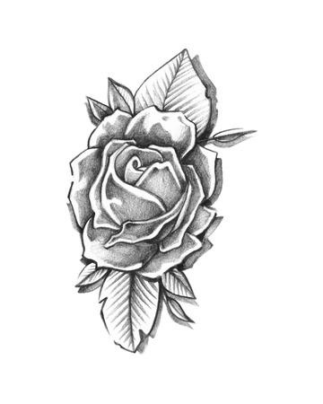 Hand drawn vector illustration ou un dessin d'une rose Banque d'images - 35585623