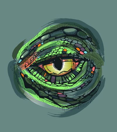 reptiles: Hand drawn vector illustrattion or drawing of a reptile?s eye