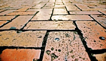 mosaic floor: Photograph of a mosaic floor