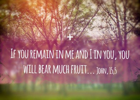remain: Illustration of the phrase Biblic 155 Gospel of John: If you Remain in Me and I in you you will bear much fruit