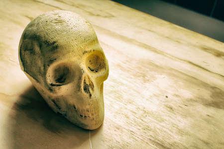 dientes sucios: Fotografía de un cráneo humano sobre una mesa de madera Foto de archivo