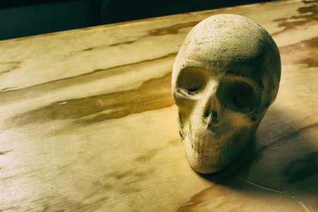 dientes sucios: Fotograf�a de un cr�neo humano sobre una mesa de madera Foto de archivo