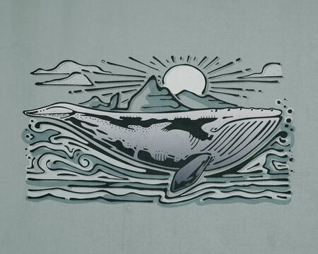 Hand drawn illustration or drawing of a gray whale in the sea