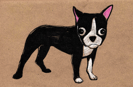 손으로 그린 벡터 일러스트 레이 션 또는 보스턴 테리어 강아지 만화 개 그리기