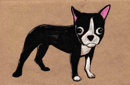 perro caricatura: dibujado a mano ilustración vectorial o el dibujo de un perro del dibujo animado del perrito de Boston Terrier