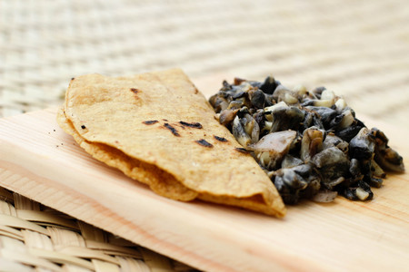 Photograph of a tortilla, some traditional mexican huitlacoche and nopals on a wood cutting board Stockfoto