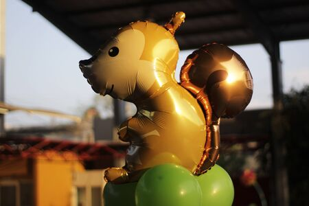 photograph: Photograph of a cartoon squirrel helium balloon