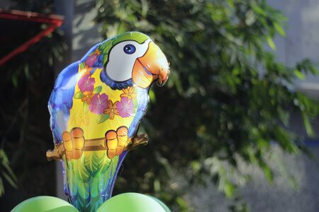 helium: Photograph of a cartoon parrot helium balloon Stock Photo