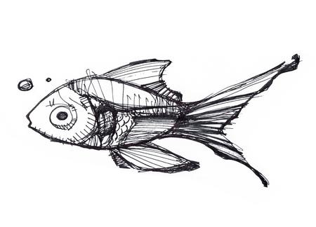 手描きイラストや、泳いでいる魚の図面 写真素材 - 60948622