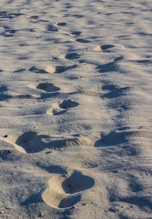Photoraph of beach sand with foot prints Lizenzfreie Bilder