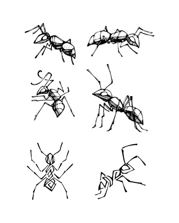 Hand drawn vector illustration or drawing of some Ink ants