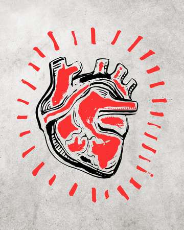 Hand drawn vector illustration or drawing of a human heart