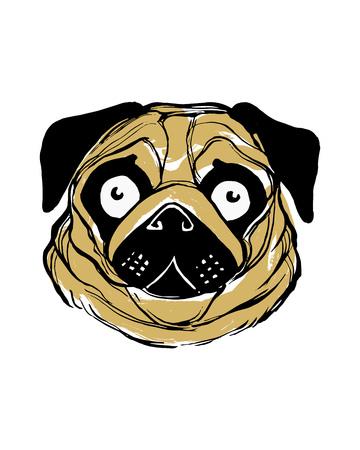 Hand drawn vector illustration or drawing of a pug dog face 版權商用圖片