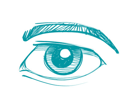 Hand drawn vector ink illustration or drawing of a human eye with eyebrow