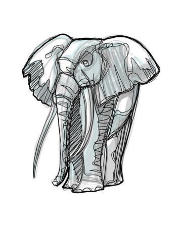 Hand drawn digital illustration or drawing of an elephant