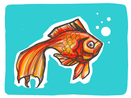 Hand drawn digital illustration or drawing of a goldfish